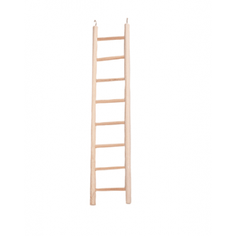 Wooden Ladder 8 Step