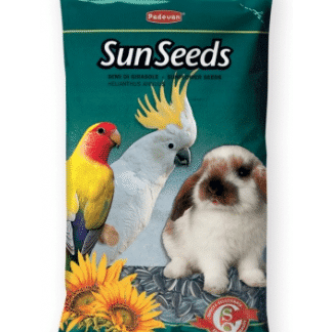 Striped Sunflower Seed 500g